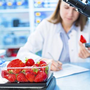 Что мы едим: польза и вред глазами химика